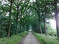3981 Bunnik, Netherlands - panoramio - Alexandros Georgiou (4).jpg
