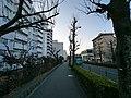 3 Chome Yōkōdai, Isogo-ku, Yokohama-shi, Kanagawa-ken 235-0045, Japan - panoramio (40).jpg