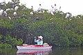 4.22.14 Kayak Paddle (2) (14004536683).jpg