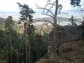 506 01 Brada-Rybníček, Czech Republic - panoramio.jpg