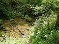 7DSCN6781(ruisseau de la grotte malou).jpg