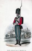 87th Foot uniform