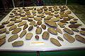 9187 - Milano, Museo storia naturale - Amigdale paleolitiche - Foto Giovanni Dall'Orto 22-Apr-2007.jpg
