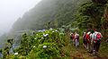 Açores 2010-07-20 (5068054045).jpg