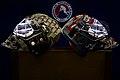 AHL- June 6 Bears v Bulldogs (40445194651).jpg