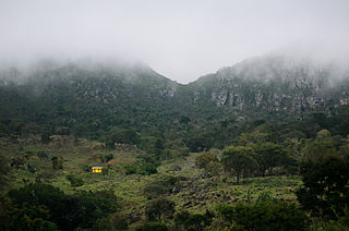 Sempre Vivas National Park National park in the state of Minas Gerais, Brazil