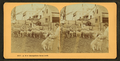 A New Hampshire farm yard, from Robert N. Dennis collection of stereoscopic views 4.png