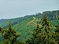 A Walk To The Next Summit - panoramio.jpg