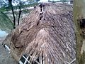 A village hut roof ruined by stroam - 3.jpg