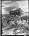 A woman and children of the Oura Bay internment camp in Henoko.png