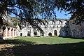 Abbaye de Mortemer 033.jpg