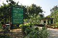 Acharya Jagadish Chandra Bose Indian Botanic Garden - Howrah 2011-01-08 9882.JPG