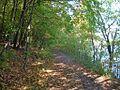 Afton State Park trail.jpg