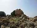 Agrigento, Tempio di Giove Olimpio (4).jpg