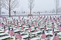 Airmen place flags, honor Veterans Day 151110-F-OD616-031.jpg