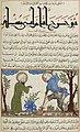 Al-Āṯār al-bāqiya ʿan al-qurūn al-ẖāliya Folio 230.jpg