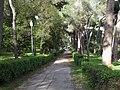 Albano Laziale - Villa Doria.JPG