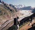 Aletsch glacier from Moosfluh.jpg