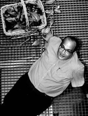 Ali Lmrabet - Ali Lmrabet in May 2006
