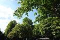 Allée Marcel Proust @ Jardin des Champs Elysée @ Paris (34229013091).jpg