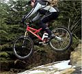 All Mountain Mountain Bike.jpg