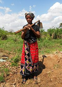 Amina says she lost her farmland to a foreign investor (8093179695).jpg