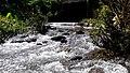 Anakkal Water Falls - panoramio (1).jpg