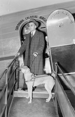 Guide dog - A blind man with his guide dog in Montreal, 1941.