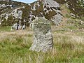 Ardalanish standing stone from South - geograph.org.uk - 1349264.jpg