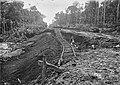 As Abundantes Chuvas na Região, Infiltravam-se nos Aterros Destruindo Trechos Pronto da Ferrovia - 891, Acervo do Museu Paulista da USP (cropped).jpg