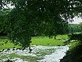 Attidiya wetland.jpg
