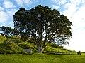 Auckland, Devonport, Hauraki Gulf Maritime Park (4).JPG