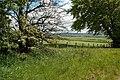 Ayrshire Farmland View - geograph.org.uk - 1320005.jpg