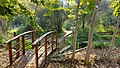 BINA Botanical garden 01.jpg