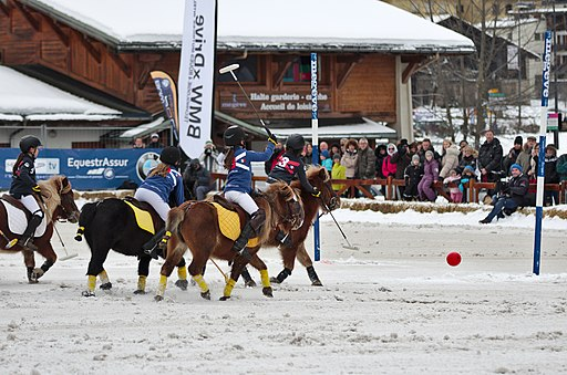 BMW Polo Masters Megève - 20140126 - Démonstration de polo-poney 5