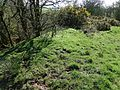 Bailliehill Mount Iron Age hill fort - outer bank - NE side.jpg
