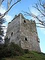 Ballynacarriga Castle - geograph.org.uk - 2343931.jpg