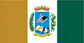 Bandeira SAA 2017.png