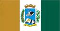 Bandeira de Santo Antônio do Amparo