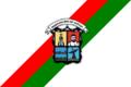 Bandera Municipalidad de Areguá.PNG