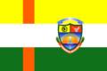 Bandera de Aguas verdes.png