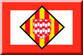 Banderagironafc.png