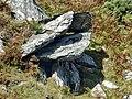 Barmouth - panoramio (38).jpg