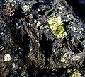 Basalt with Olivine (24081921665).jpg