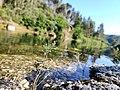 Beleza do rio na Várzea Negra. 27.jpg
