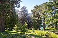Bellagio, Wikimania 2016, MP 015.jpg
