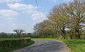 Bend on New Barn Road - geograph.org.uk - 395044.jpg