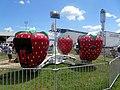 Berry Go Round - panoramio (6).jpg