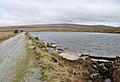 Big Pond, Lee Moor.jpg
