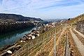 Blick auf Eglisau am Rhein.jpg